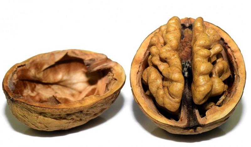 neurogastronomía aplicada